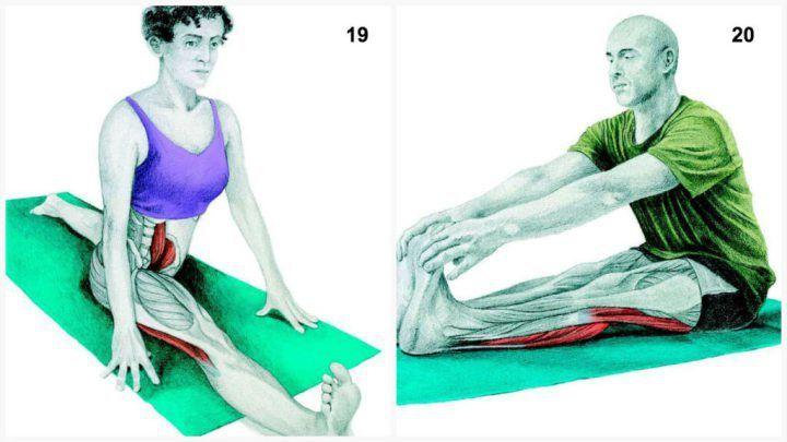 X1519. Задействованные мышцы: камбаловидные и икроножные  Выполнение: начинайте растяжку мышц, стоя на одном колене (как для выпада), соблюдайте осторожность, если у Вас есть проблемы с бедрами.  20. Задействованные мышцы: задней поверхности бедра и икроножные  Выполнение: сядьте на седалищные кости и при необходимости согните ноги в коленях. Постарайтесь взяться руками за стопы, выпрямив ноги в коленях.