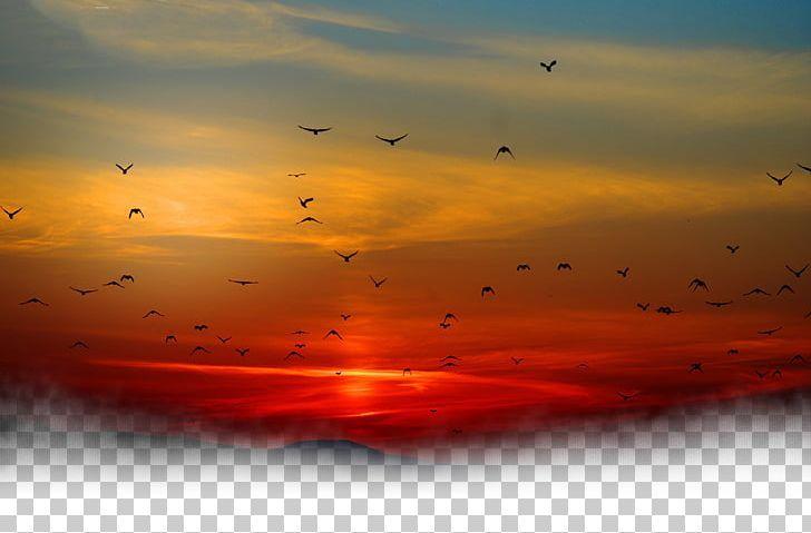 Sunset Sky Cloud Png Afterglow Animals Atmosphere Bird Bird Cage Sunset Sky Color Splash Art Clouds