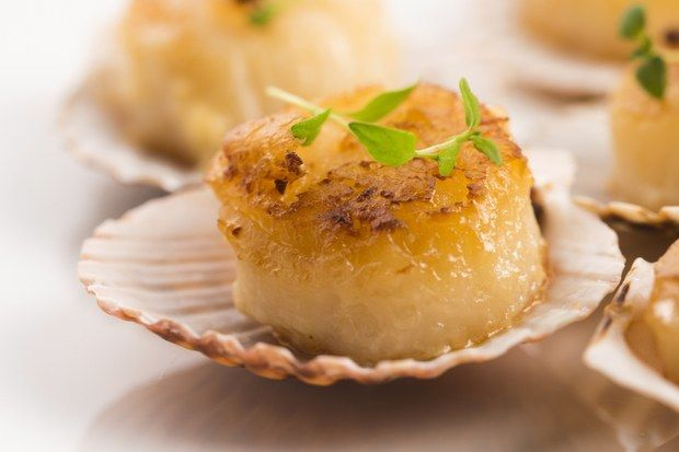 coquilles-st-jacques.jpg