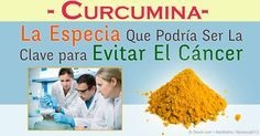 La curcumina, un derivado de la cúrcuma, tiene propiedades de tratamiento del cáncer, especialmente para el glioblastoma, un tipo mortal de cáncer cerebral. http://articulos.mercola.com/sitios/articulos/archivo/2015/12/28/esta-especia-inhibe-el-tumor-cerebral-en-ratones.aspx