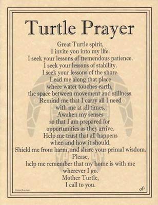 Turtle Prayer Parchment Page Spirit Guide.