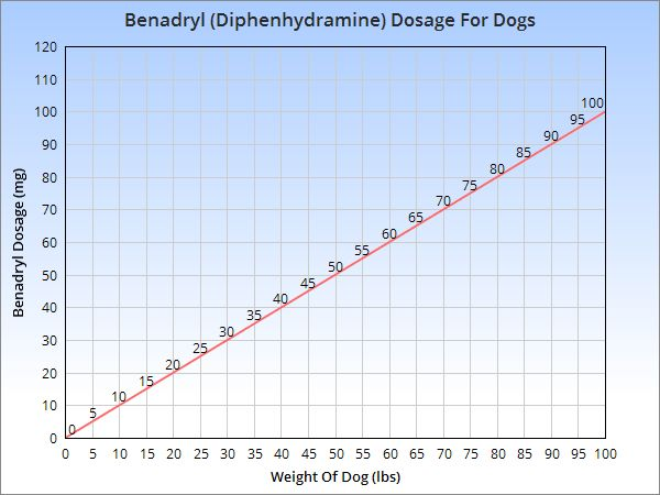 Benadryl Dosage For Dogs For Anxiety