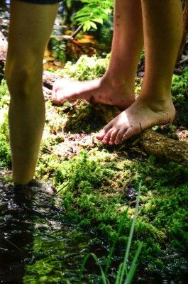 Nature is the Ultimate Sensory Experience: A Pediatric Occupational Therapist Makes the Case for Nature Therapy