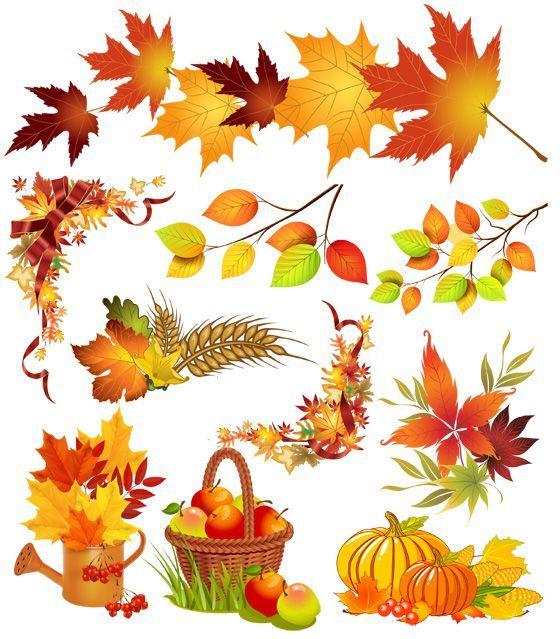 Осенний клипарт на прозрачном фоне