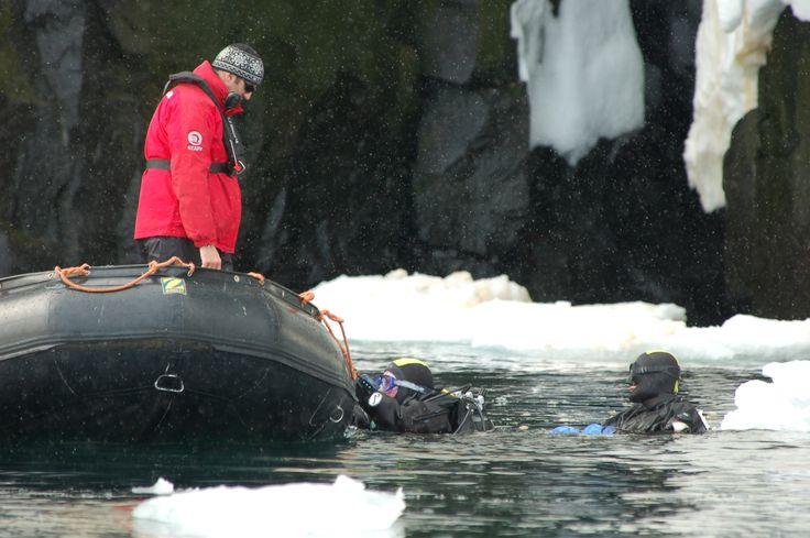 Polar diving in Spitsbergen © Oceanwide Expeditions www.oceanwide-expeditions.com