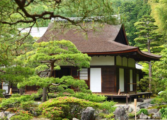 Als je behoefte hebt aan een rustmomentje, dan zijn de Japanse theeceremonies je op het lijf geschreven. Ervaar een echte theeceremonie in een van de tempels in Kyoto. #Theeceremonie #Kyoto #Japan