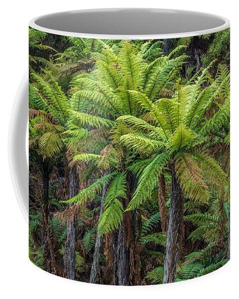 Ferns Coffee Mug featuring the photograph Green by Racheal Christian