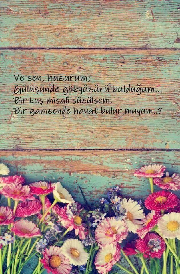 Ve sen, huzurum; Gülüşünde gökyüzünü bulduğum... Bir kuş misali süzülsem, Bir gamzende hayat bulur muyum..?