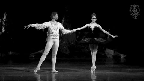svetlana zakharova black and white gif