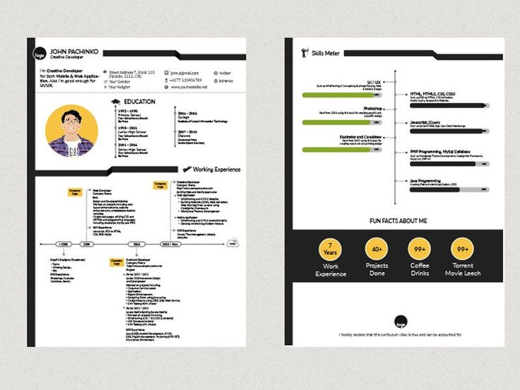 Free Creative Resume Template in 2 Pages