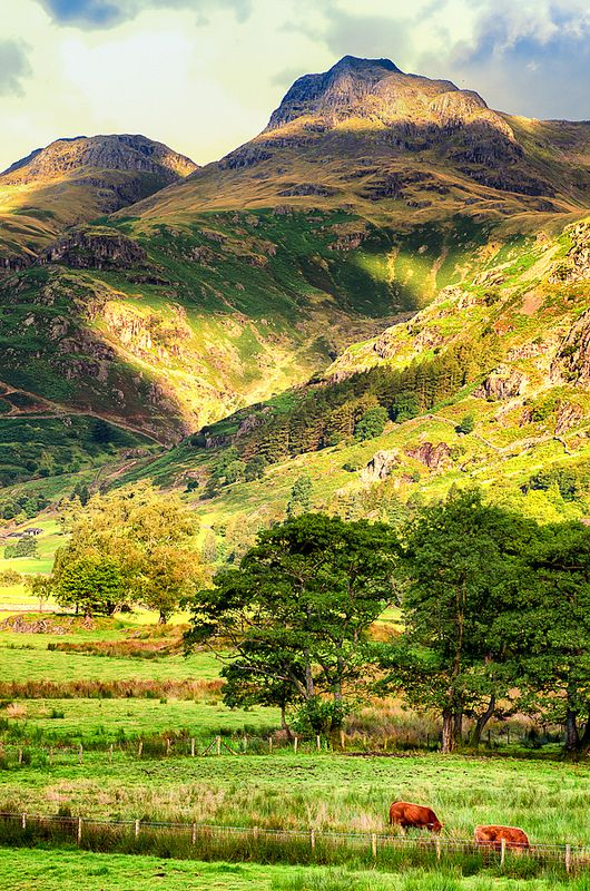 Lake District, England Where Beatrix Potter went as a child.