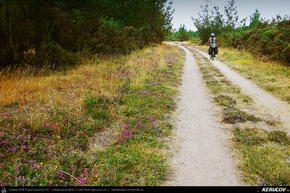 Traseu cu bicicleta MTB XC El Camino de Santiago del Norte - 11: Baamonde - Miraz - Roxica - Sobrado Dos Monxes . MTB Ride El Camino de Santiago del Norte - 11: Baamonde - Miraz - Roxica - Sobrado Dos Monxes - Galicia, Spania