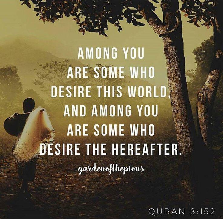 Koran, Sprüche