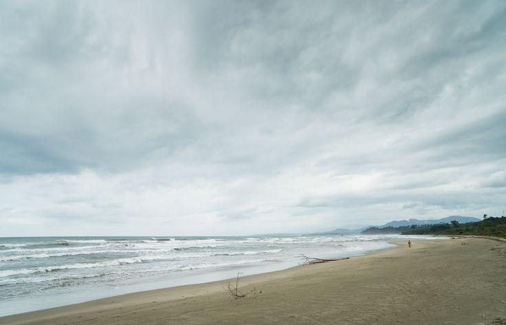 Inmensas playas solitarias son la transición entre el batido mar Caribe y la espesura vegetal.