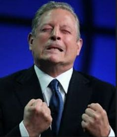 Fox News' Chris Wallace Confronts Al Gore With His Failed Global Warming Predictions [VIDEO]