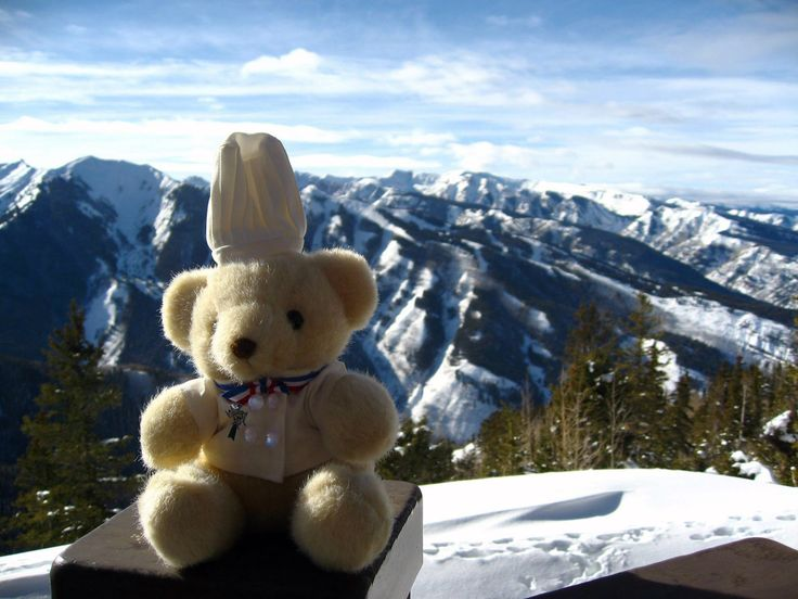 #‎BechamelBear‬ is in Aspen, running away from the heat!