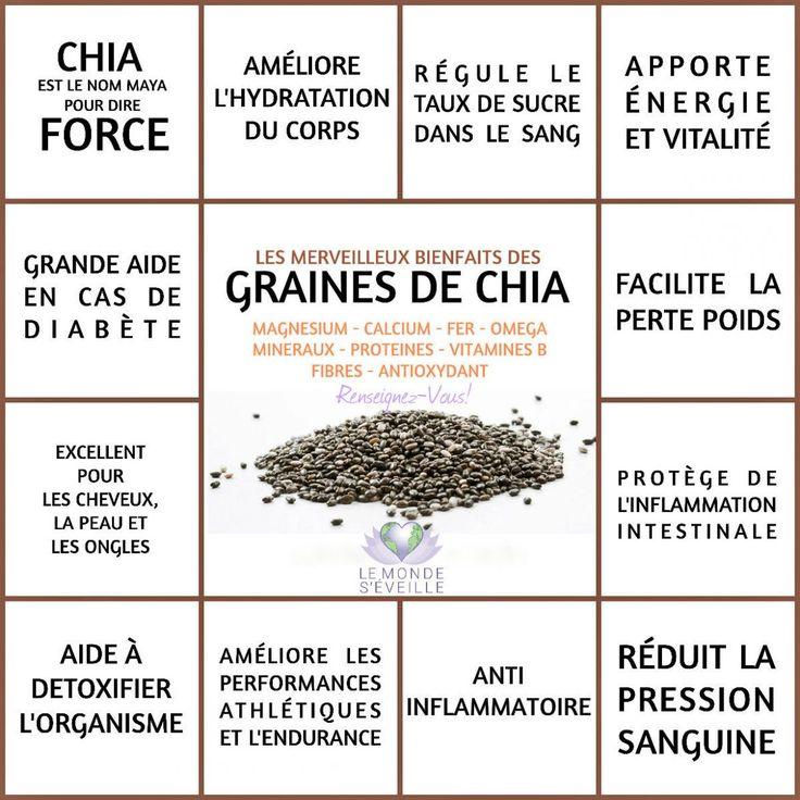 GRAINE DE CHIA | Le Monde s'éveille