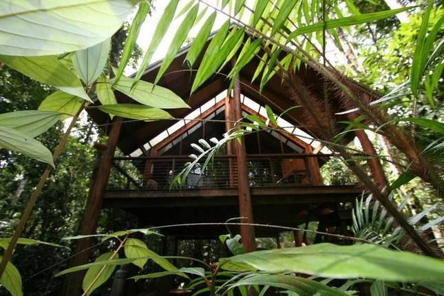 Ever feel you just NEED that off-the-grid type of #getaway? The Canopy Rainforest Treehouse & Wildlife Sanctuary will give you ancient rainforest, treehouse living, stunning views and that offline time you so desperately need!