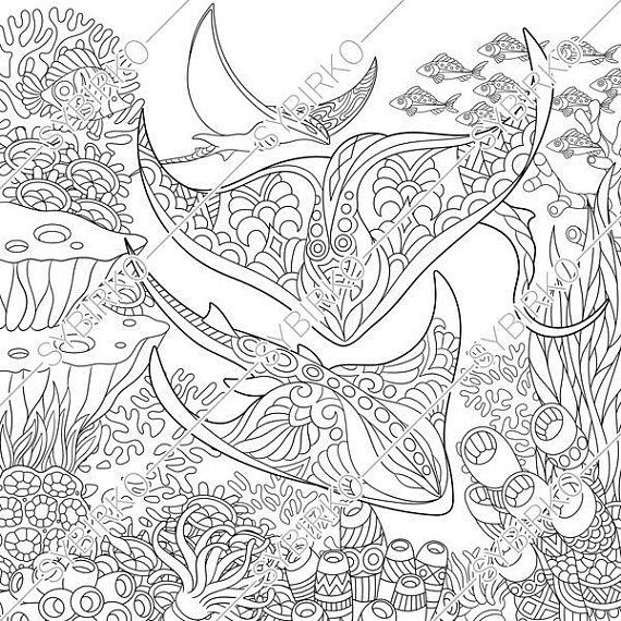 Coloring Pages For Adults Stingray Manta Ray Ocean Sea Etsy In 2021 Shark Coloring Pages Coloring Books Coloring Pages
