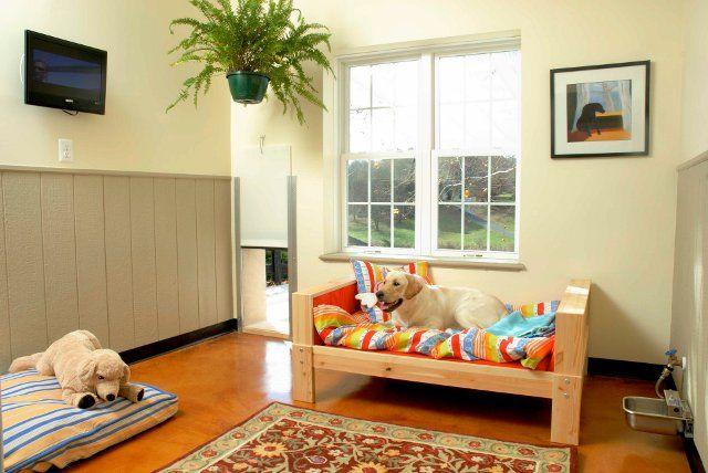 196 Best Dog Boarding Kennels Images On Pinterest Dog