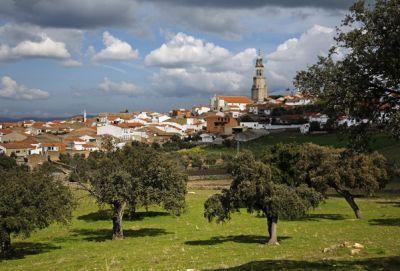 Encinar en los alrrededores de Pedroche © www.andaluciafotos.com