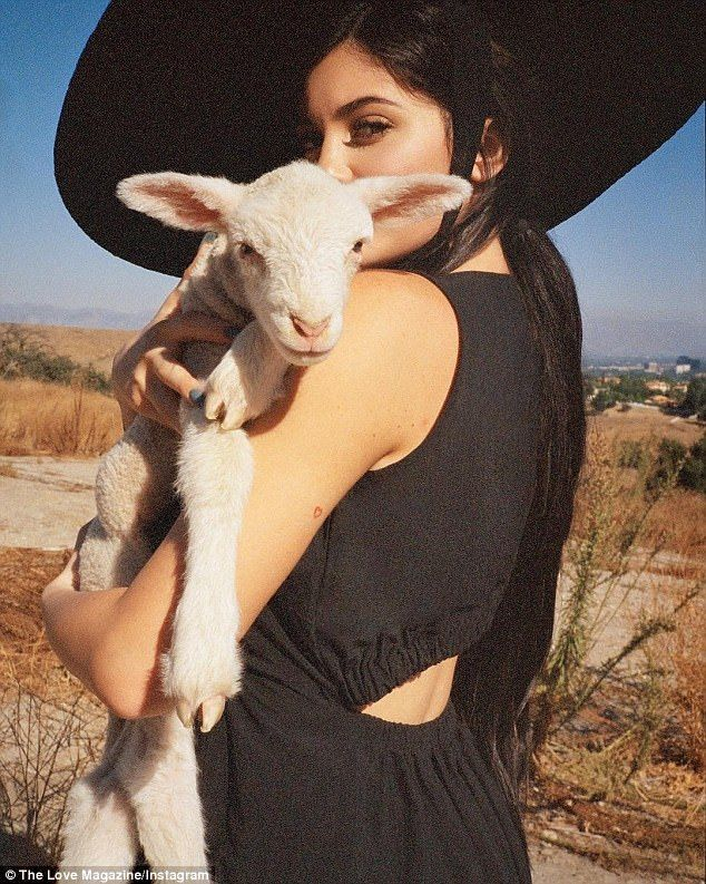 Little lamb: Kylie Jenner cuddled a baby sheep in her arms as she gazed towards the camera... #kyliejenner