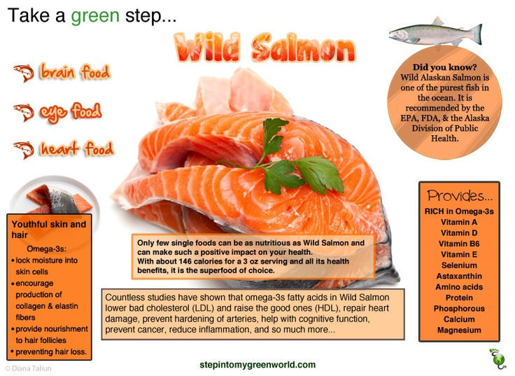 Do you eat fish do you know that wild salmon is the for What do wild fish eat