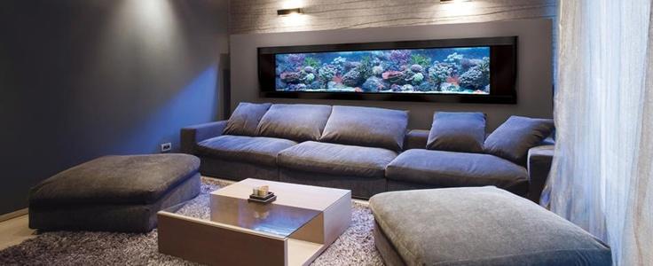 Custom Sized Panoramic AquariumsCustom Size, Aquariums Fish, House Ideas, Wall Aquariums, Living Room, Dreams House, Fish Tanks Wall, Aquariums Ideas, Fishtank Wall