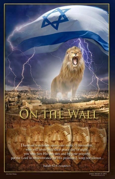Lion of Judah!