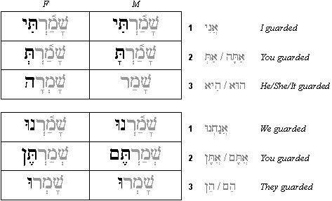 Let's Learn Hebrew Picture Dictionary PDF