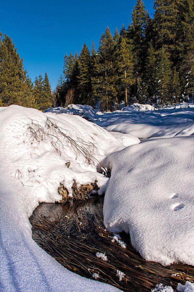 Indian Creek, Kings Canyon (California)