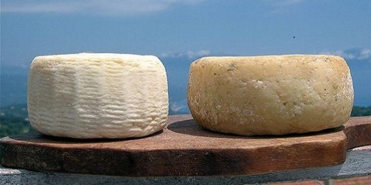 Il ricercatissimo Marzolino o Marzellina di Teano, un prelibato formaggio morbido di media stagionatura prodotto nelle frazioni collinari del Comune di Teano.