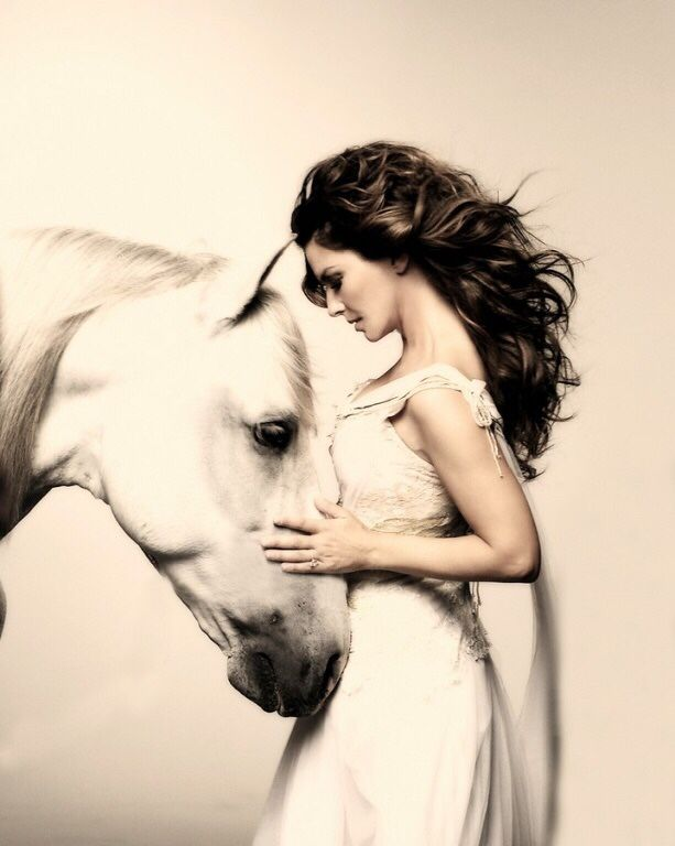 Horse Fashion Photography Learn about #HorseHealth #HorseColic www.loveyour.horse