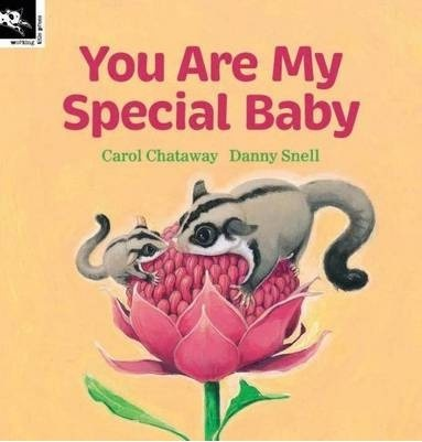 You Are My Special Baby book. (Australian baby animals). Not a craft, but the only board I've got for gift ideas!