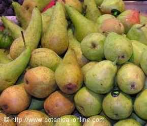 Propiedades nutricionales de la pera.