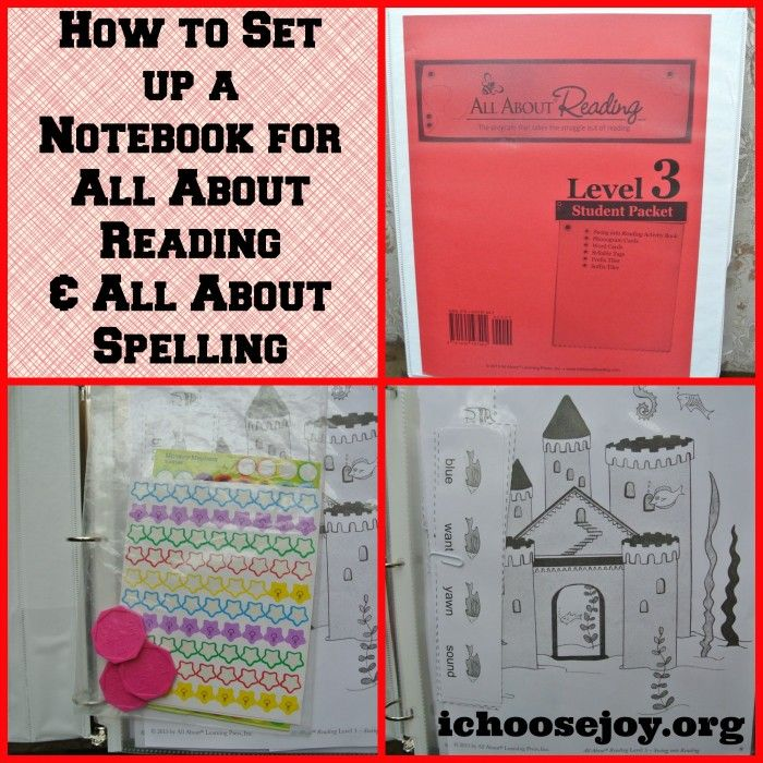 Here is a handy way to keep all your tools for teaching a subject in one place!  How I set up a notebook for All About Reading and All About Spelling.