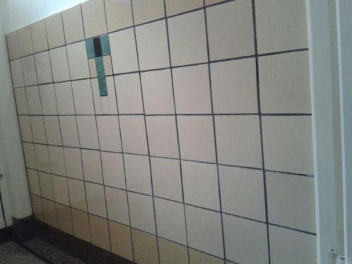 in toilet soortgelijk accent maken van rest/breuktegels in verder witte betegeling met zwarte ronde rand