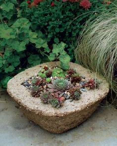 Make Your Own Hypertufa Container | Fine Gardening Supplies: mixing tub, container for measuring, peat moss, perlite, Portland cement, concrete, reinforcing fibers, dust mask, rubber gloves, trowel, plastic drop cloth, plastic container for a mold, wire brush
