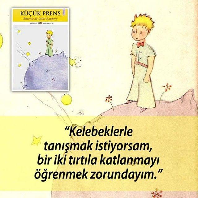 Kelebeklerle tanışmak istiyorsan iki üç tırtıla katlanmak zorundasın. - Antoine De S. Exupery / Küçük Prens