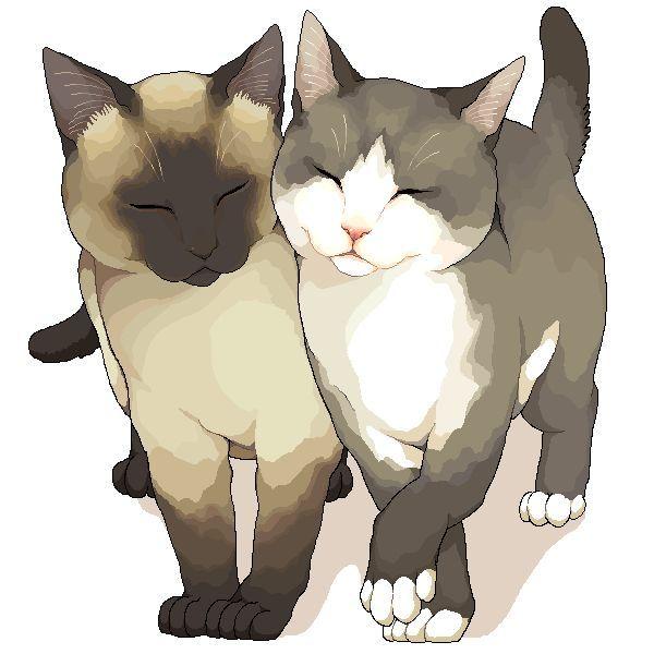 Katzen, Cats...beautiful print.