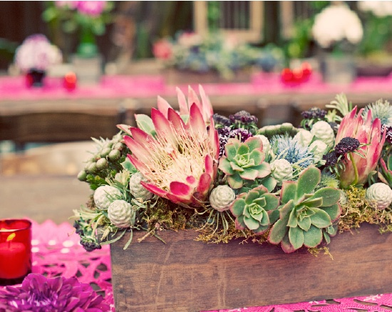I love the heightened colour in this photo of the succulent table centrepiece