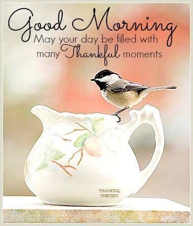 Good Morning May Your Day Be Filled WIth Thankful Moments....Доброе утро Пусть Твой день Исполняется благодарными Моментами...