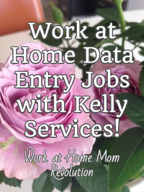 Career infographic : Work at Home Data Entry Jobs with Kelly Services! / Work at Home Mom Revolution