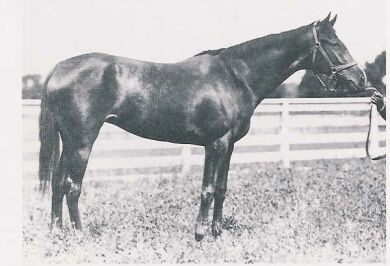 This Day In Kentucky Derby History: 1915 - H.P. Whitney's Regret became the first filly to win the Kentucky Derby.  keepinitrealsports.tumblr.com  keepinitrealsports.wordpress.com