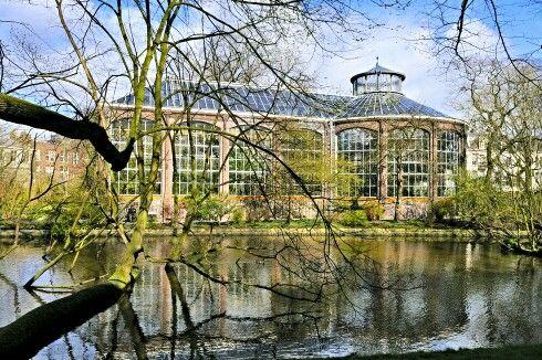 Hortus Botanicus Ámsterdam. Netherlands