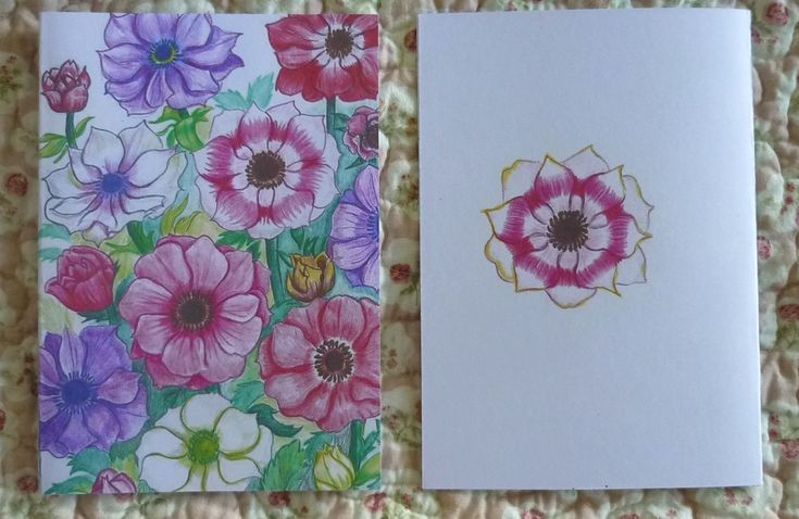 Anemone Greeting Card Gift