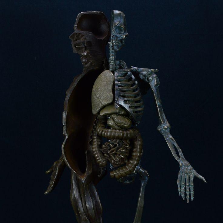 Ecorche Mecanique #cameronjonessculpture #sculpture #sculptures #art #artist #artwork #fineart #bronze #metal #metalart #ecorche #mechanic #anatomy #figure #skeleton #muscle #organs