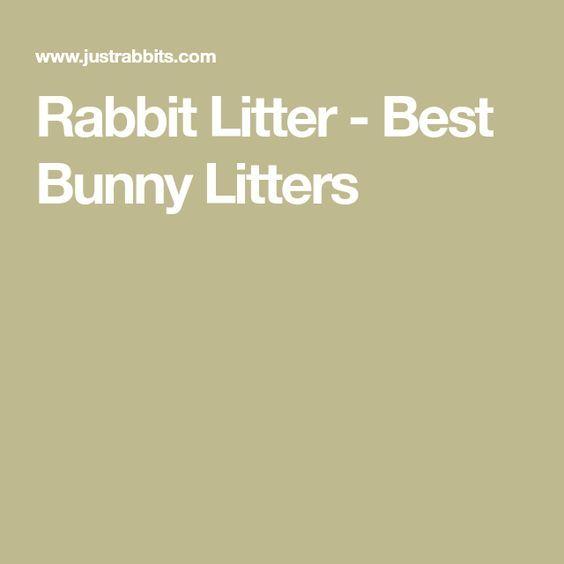 Rabbit Litter - Best Bunny Litters
