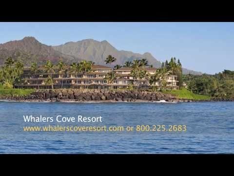 The perfect vacation! Whalers Cove Poipu, Hawaii! Kauai Condo Rentals on the beach!
