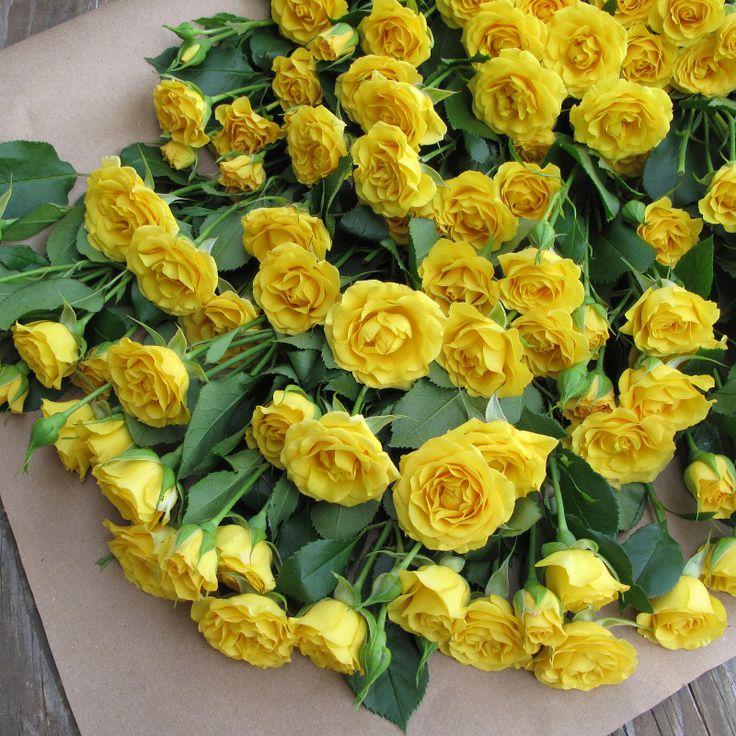 Frisco'd Flower Bouquet - The Bouqs Company